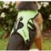 Image 8 - Harnais d'assistance Kn'1 Active Grip pour chien