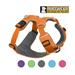 Image 5 - Harnais Ruffwear Front Range de sport et promenade pour chien
