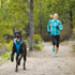 Image 10 - Harnais Ruffwear Front Range de sport et promenade pour chien