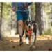 Image 11 - Harnais Ruffwear Front Range de sport et promenade pour chien