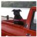 Image 9 - Harnais Norvégien Ezydog Quick Fit pour chien