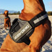 Image 4 - Harnais polyvalent Ezydog Convert pour chien
