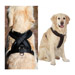 Image 8 - Harnais sport cross TXArtSportiv pour cani-rando et cani-jogging