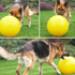 Image 4 - Jolly Ball Push-N-Play jeu de boule pour chien