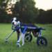 Image 7 - Kit-Front déambulateur Canis-Cart Liberty® pour chien handicapé ou paralysé