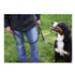 Image 4 - Laisse cuir chromé noir pour chien