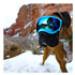 Image 8 - Lunette masque oculaire thérapeutique pour chien Rex-Specs K9