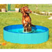 Image 2 - Piscine pour chien Doggy Pool
