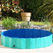 Image 5 - Piscine pour chien Doggy Pool