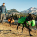 Image 7 - Sac de bât sac à dos Pro Approach Pack pour chien