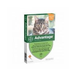 Advantage 40 Anti-puces pour chats < 4 kg
