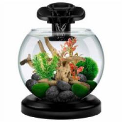 Aquarium Globe Tetra Duo Waterfall noir 6,8 Litres