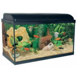 Aquarium Aquadream Aquatlantis Coloris Noir Modèle 60 LED Contenance 52 litres
