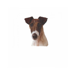 Autocollant race Fox Terrier Poil Lisse 7 cm - Lot de 4
