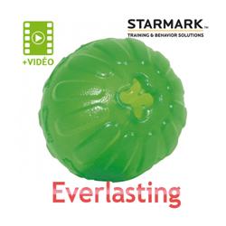 Balle Everlasting très résistante pour chien Small diam 7 cm