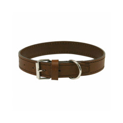 Collier cuir chien de chasse traditionnel T2