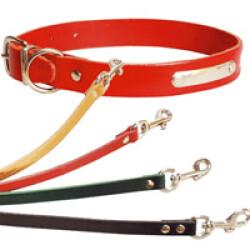 Collier chien cuir déco simple T1 Noir (26 à 31 cm) lg 14 mm