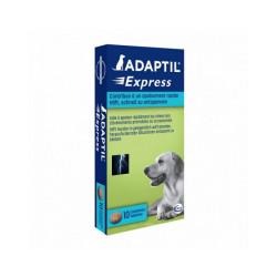 Comprimés Adaptil Express Ceva anti stress chien Boîte de 10 comprimés