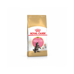 Croquettes pour chaton Royal Canin Maine Coon Kitten Sac 2 kg