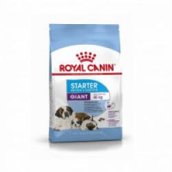 Croquettes Royal Canin Giant Starter Mother & Babydog Sac 15 kg (DLUO 6 mois)