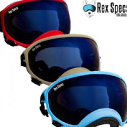 Masque Rex-Specs Medium Jaune lentilles claire et fumée