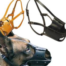 Muselière chien type police