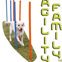 Slalom Agility-Family ™