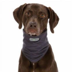 Tour de cou gris antiparasitaires pour chien Insect Shield XS