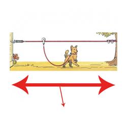 Trolley coulissant pour chien lg 15 m
